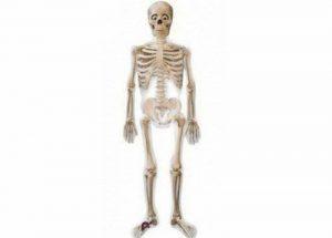 Mr Bones Skeleton Airwalker Balloon